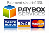 1-paybox-services164x110