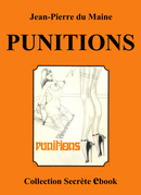 PUNITIONS (eBook) De Jean-Pierre du Maine - Vertiges Secrets