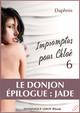LE DONJON, ÉPILOGUE : JADE De  Daphnis - Dominique Leroy